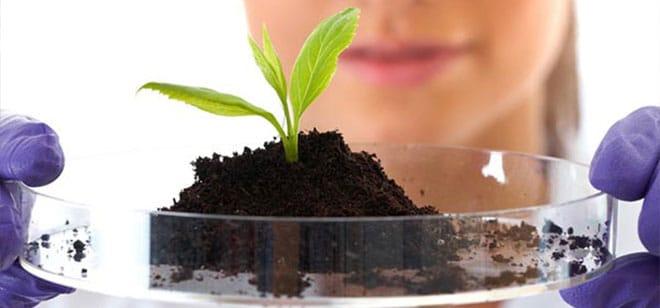 Principles of Soil Analysis